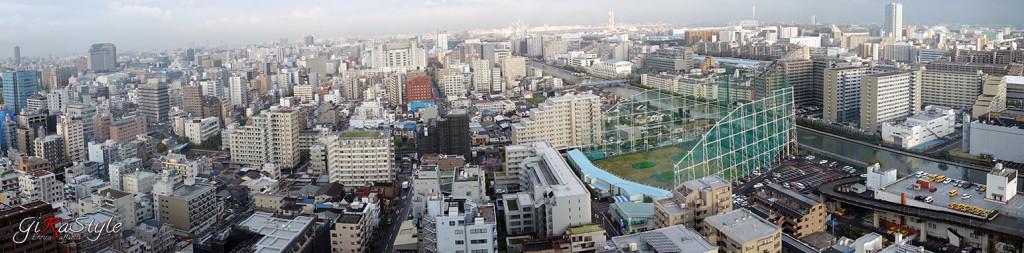 Panoramica-su-Tokyo