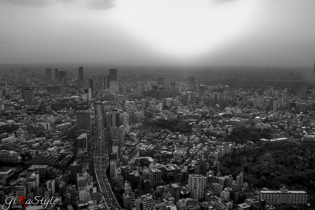 Roppongi-hills-tower-view