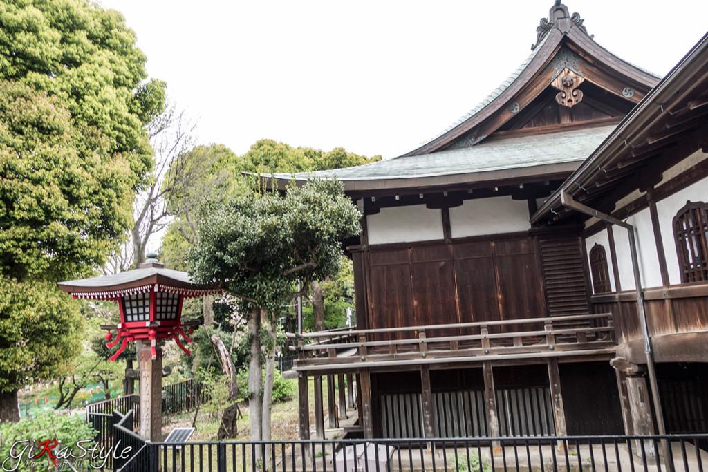 Ueno-park-dentro-il-parco-di-Ueno