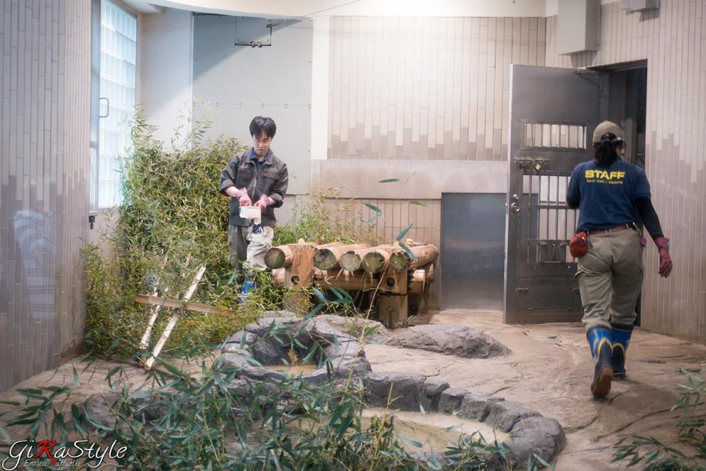 Addetti al panda