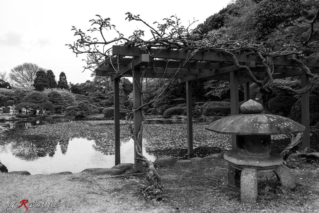 bianco-e-nero-templio