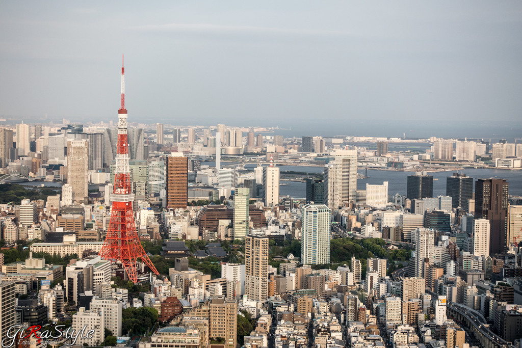 tokyo-tower-from-roppongi-hills
