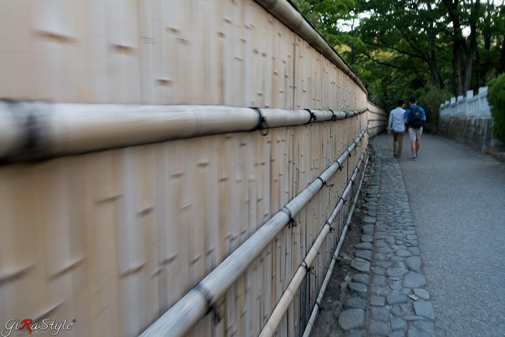 camminando-verso-la-foresta-di-bamboo