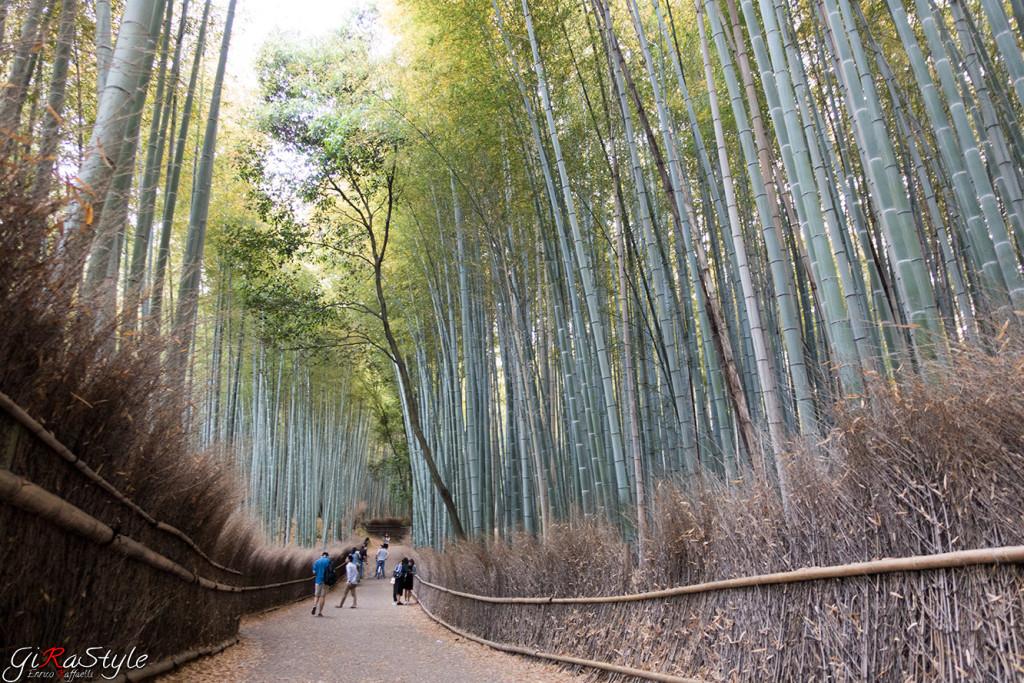 Passeggiata a Kyoto nella foresta di Bamboo