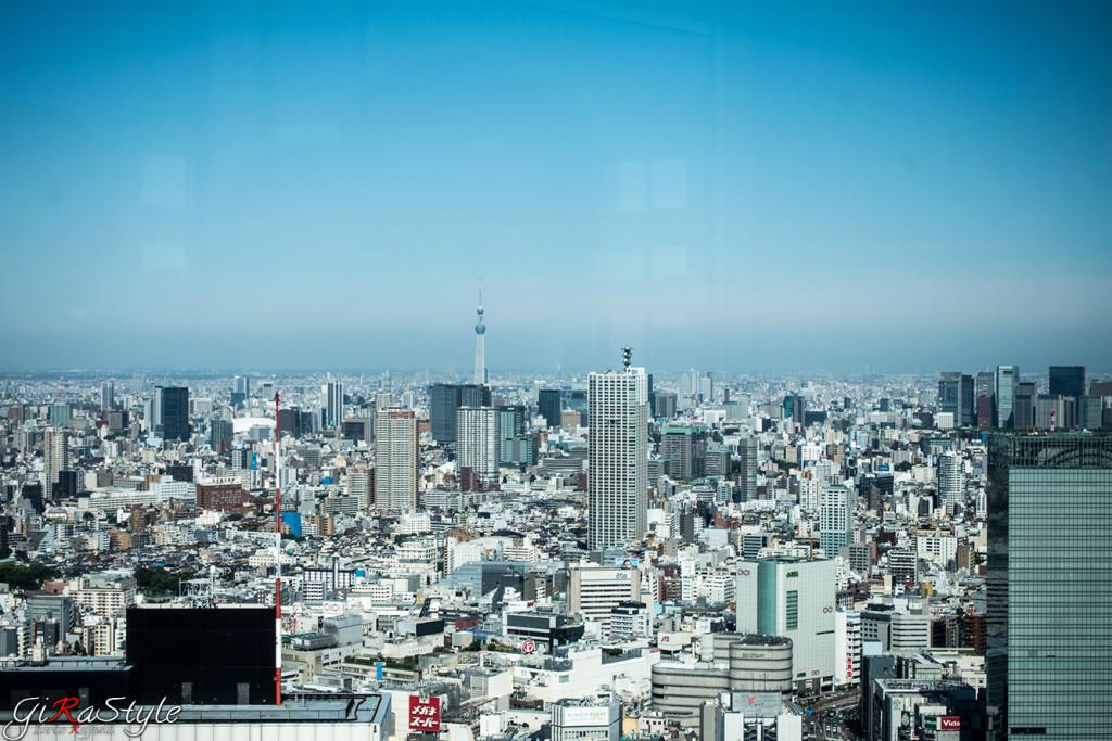 Tokyo da Shinjuku
