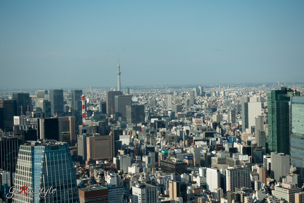 Tokyo-Sky-Tree-from-Tokyo-Tower