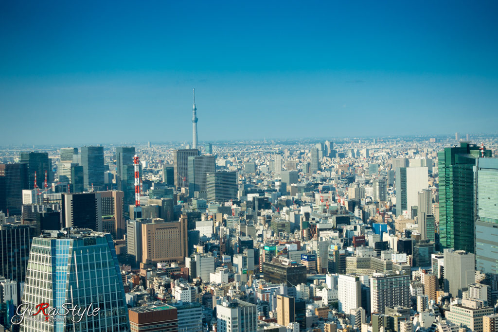 Vista della Sky Tree dalla Torre di Tokyo